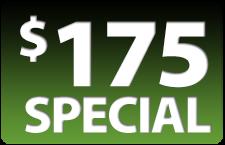 175-SPECIAL